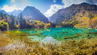 Download Relaxing Instrumental Music, Peaceful Sounds, Stress Relief, Emotional Healing Mp3 and Videos