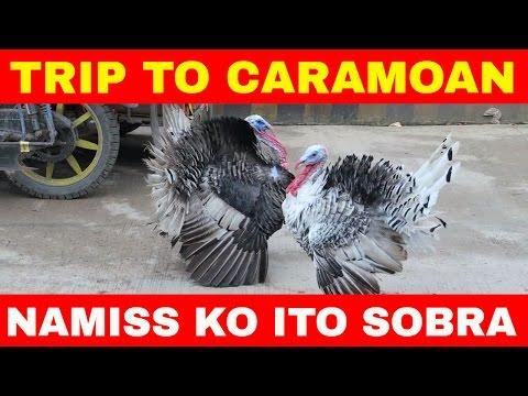 Vlog # 21: Manila to Caramoan Trip