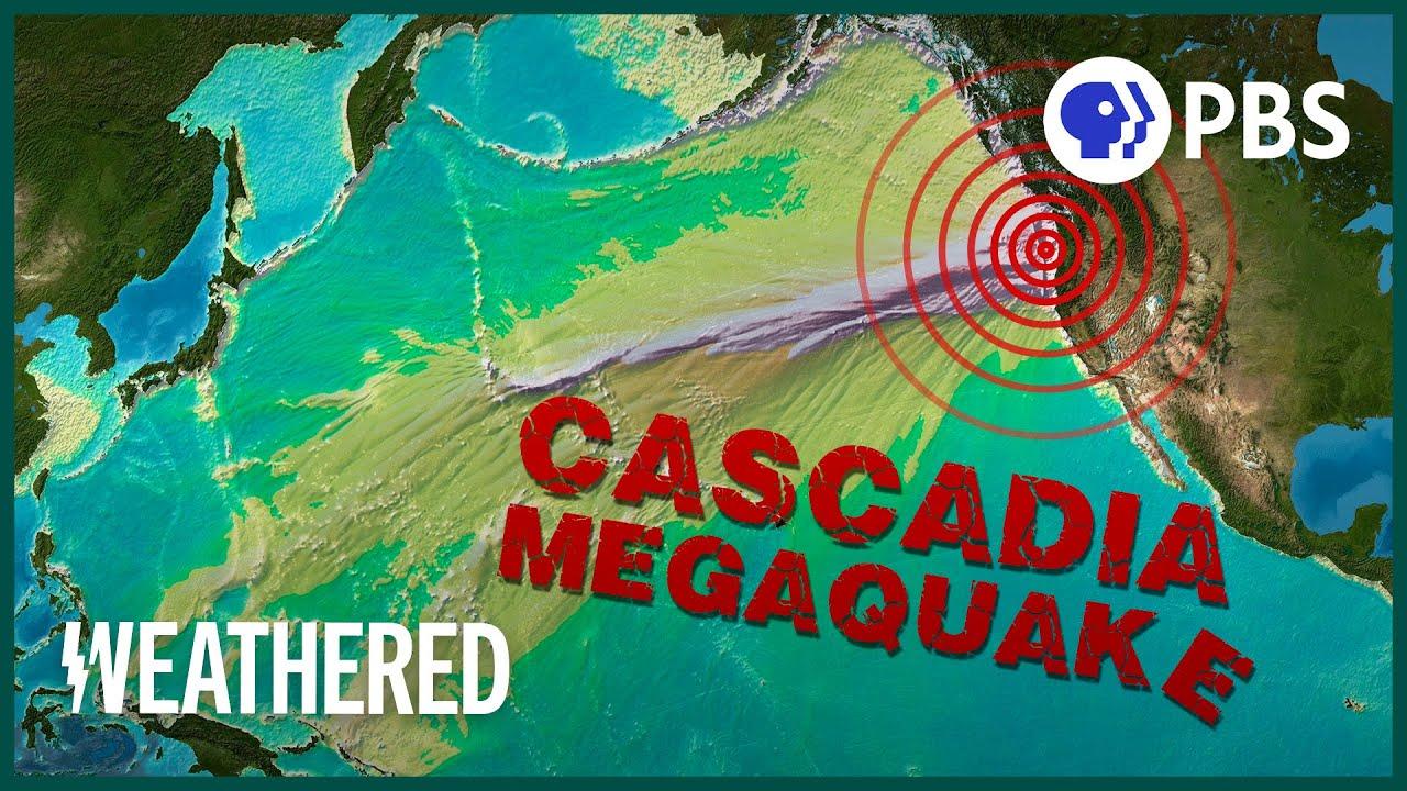 4.3 magnitude earthquake shakes Los Angeles | TheHill