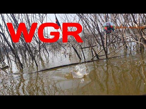 MANCING NYOBOK WADUK GUNUNG ROWO PATI - YouTube