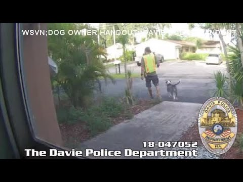 Man steals pit bull from Florida home