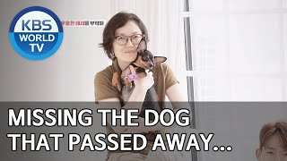 Missing the dog that passed away… [Dogs are incredible/ENG/2020.05.20]