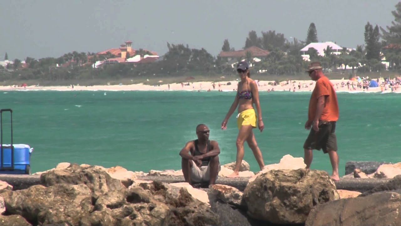 Venice Beach Florida Fishing Report