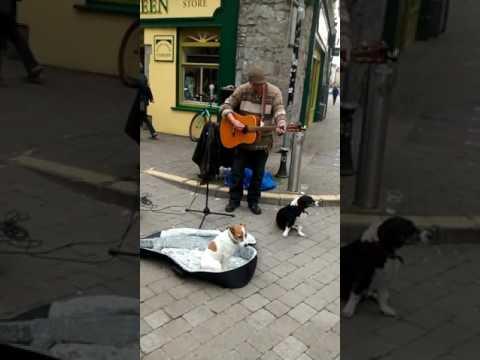 VOCALS GREAT - Street Musician