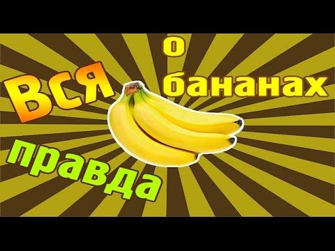 Банан: полезные свойства этого фрукта для здоровья трудно