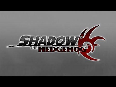 Digital Circuit - Shadow the Hedgehog