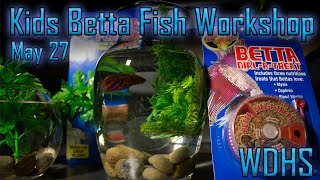 Kids Betta Fish Workshop - May 27/17