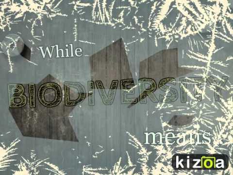 Kizoa Online Movie Maker: Conserving Biodiversity Campaign