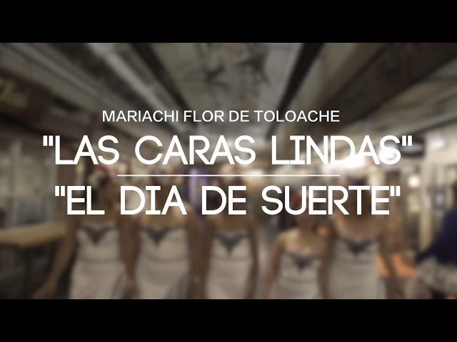 Mariachi Flor De Toloache - Fania Medley (Las Caras Linda/El Dia De Suerte)