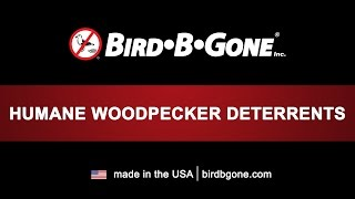 Woodpecker Deterrents
