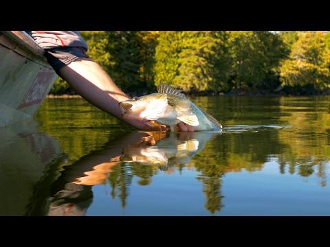 Onaman Lake Walleyes - In-Depth Outdoors TV Season 11 Episode 13