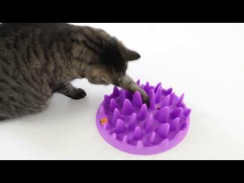 Миска игрушка интерактивная для кошек  Northmate Catch