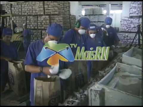 TV MAIS RN  14 - Empreendedorismo