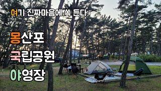 몽산포 국립공원 야영장 힐링캠핑 I 최애캠핑장 등극 I…