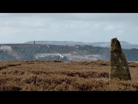 Newton Moor & Captain Cook's Monument, North York Moors - 19 March 2018