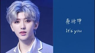 蔡徐坤-It's you (Cai XuKun/채서곤) [가사/lyrics]