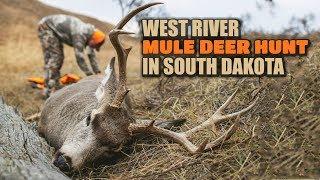 West River Mule Deer Hunt in South Dakota