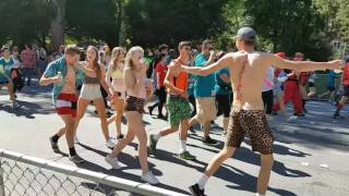 Bay to breakers San Francisco 2017