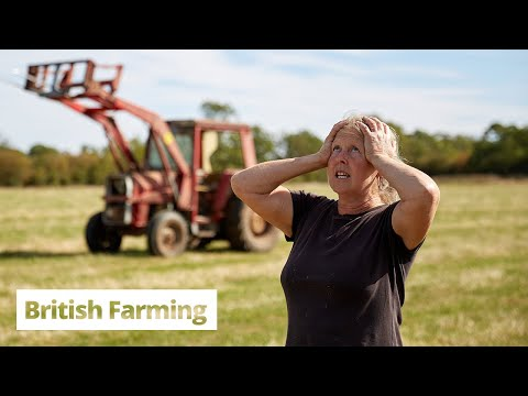 British Farming | What's the Point?