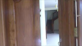 Kerala House Front Door Design