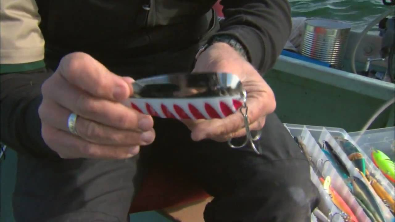 tips on downrigging or trolling for lake trout csf 24 07 tip 2, Fly Fishing Bait