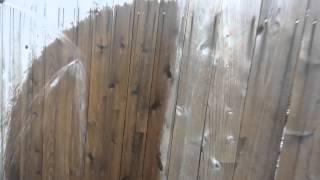 Shun Wood Sealant On Aged Picket Fence
