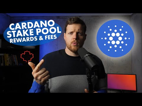 Cardano Stake Pool Rewards And Fees (How To Pick The Best Stake Pool)