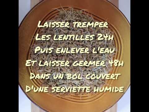 falafel-aux-lentilles-germées