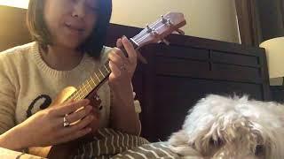Gambar cover Phiji do cover   manipuri cover with my doggo  