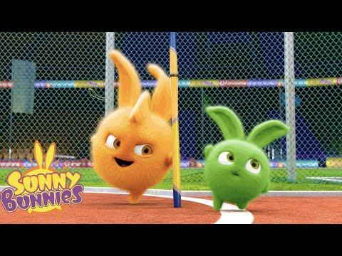 SUNNY BUNNIES - Sports Games | Season 1 | Cartoons for Children