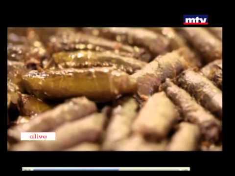 Mechwar - Lebanese Food - 18/01/2015