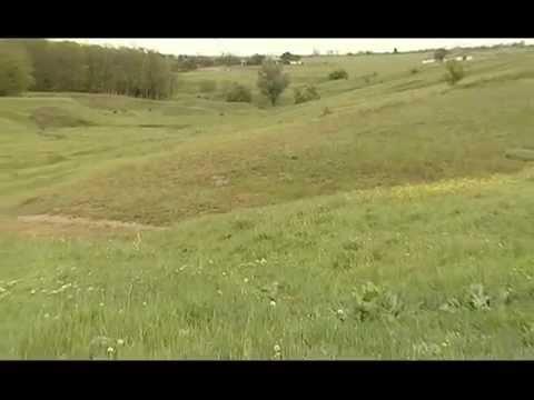 Малоянисоль, Донецкая область, Maloyanisol 01