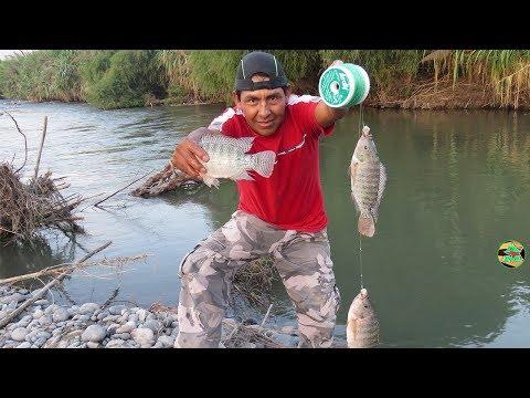 Mira las Técnicas que usa And Moll para Pescar Tilapias con Anzuelo