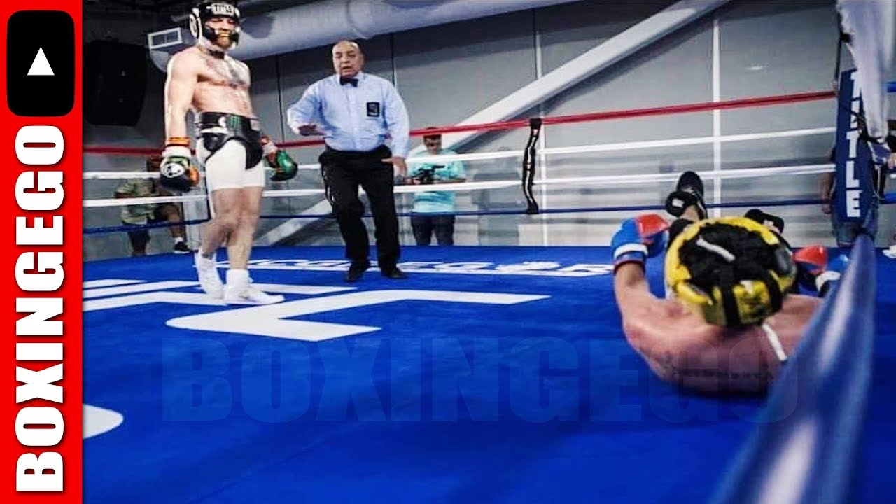 Image result for malignaggi mcgregor sparring