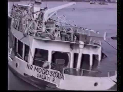 Tragedia vasului ,,Mogosoaia''