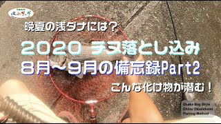 2020 チヌ落とし込み・ヘチ釣り 8月〜9月の備忘録Part2