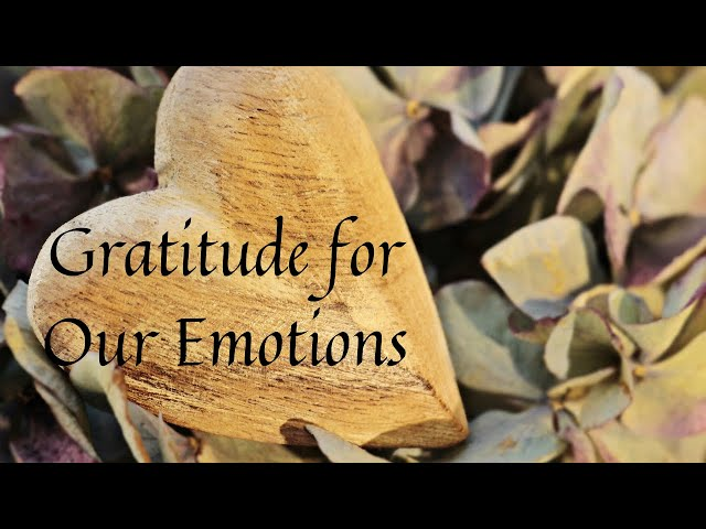 Gratitude for Our Emotions