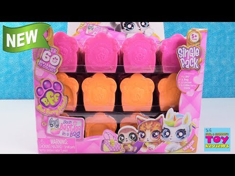 BFF Best Furry Friends Season 1 Puppy Kitty Unicorn Toy Review | PSToyReviews