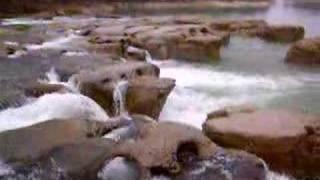 Saut de la Saisse Pont de Poitte Jura Mars 2007