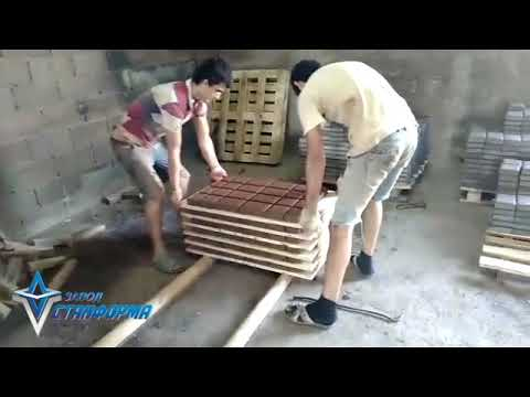 "Производство тротуарной плитки 100*200 мм. Матрица от завода ""Станформа"""