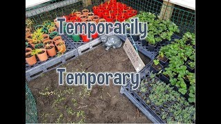 Temporarily temporary