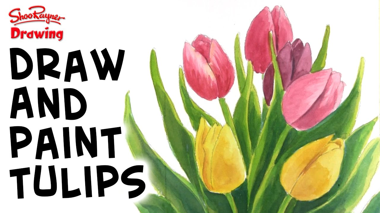 how to draw beautiful tulips youtube