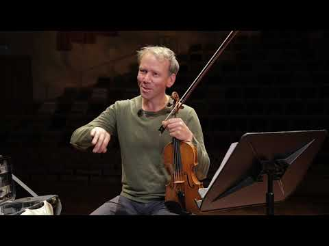 Philharmonie Zuidnederland Viool