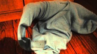 Dachshund Stuck In Sweater