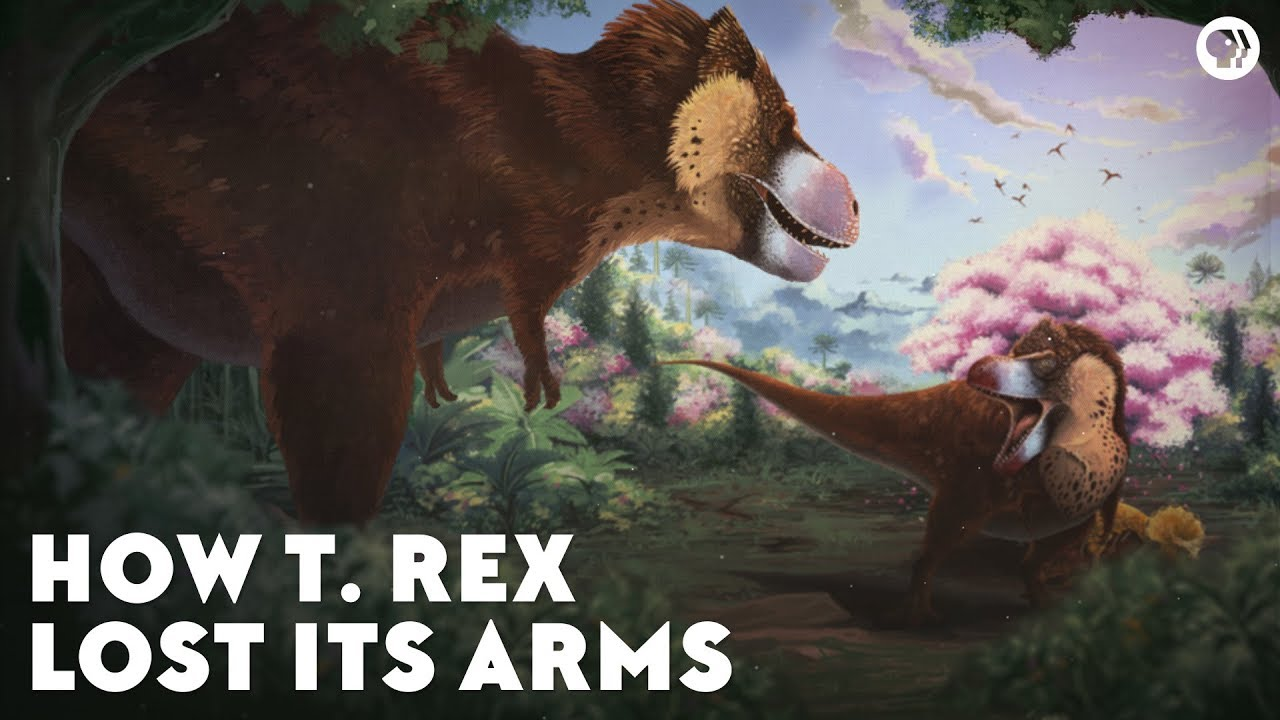 how-the-t-rex-lost-its-arms