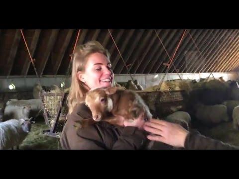 Knuffelen met het eerste lam in Lhee - Vlog Boswachter Hanne #74