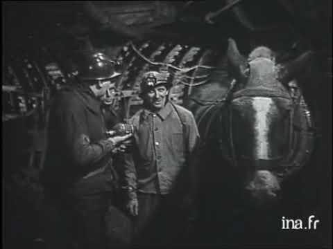 Visite à Une Mine De Charbon   Fosse 12 Des Houillères De Lens   Vidéo Ina Fr