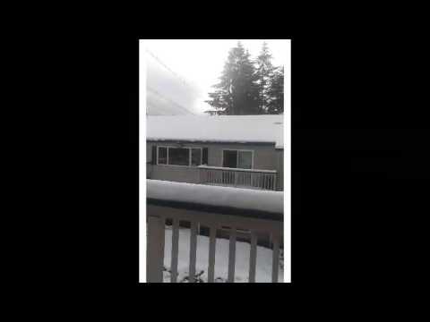 Snow in Federal way Wa .Feb 6 2017