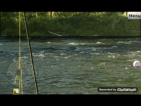 Fly Fishing Simulator Catching Tough And Powerfull Steelheads 10 Sub Special