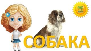 Мультик про СОБАКУ для детей 1-3 года. Развивающие мультики про домашних животных. Маленький остров.